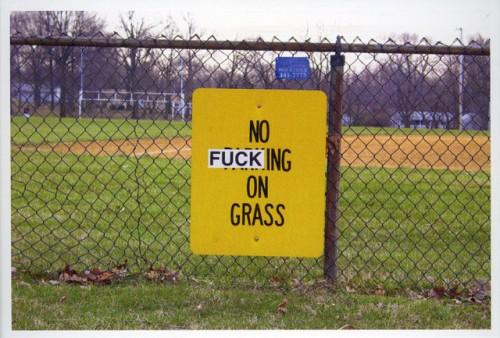 No fucking on the grass