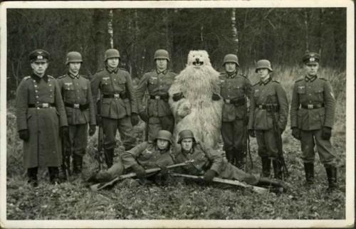 Нацистский медведь